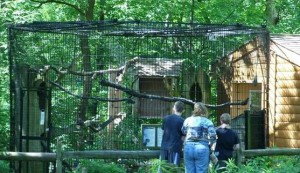 willowbrook wildlife center outdoor exhibits