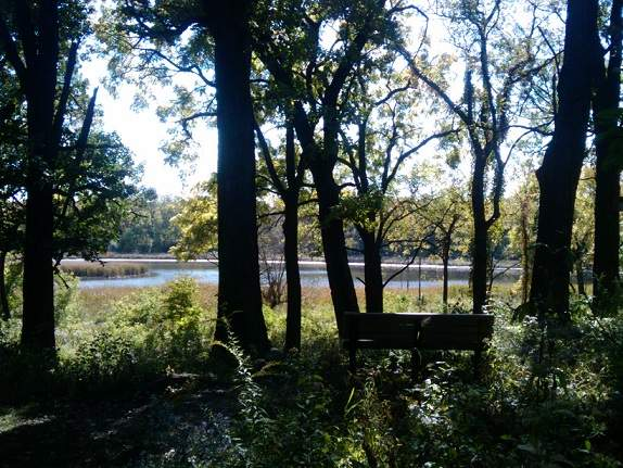 Lake at Lyman Woods
