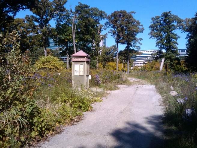 Lyman Woods Entrance