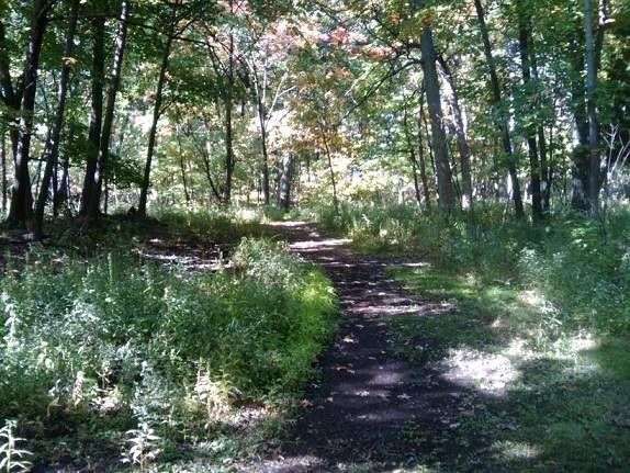 Lyman Wood's Meandering Trails