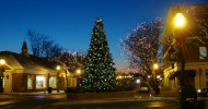 Christmas Tree Lighting Events in DuPage County