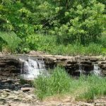 Waterfall Glen Forest Preserve in Photos