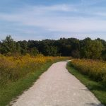 Greene Valley Forest Preserve in Naperville – Great Views Await